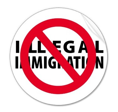 Law and Legal,About,Tax Law,immigration,The Common Law,The Court